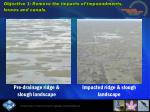 objective 1 remove the impacts of impoundments levees and canals