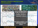 objective 3 restore ridge and slough microtopography