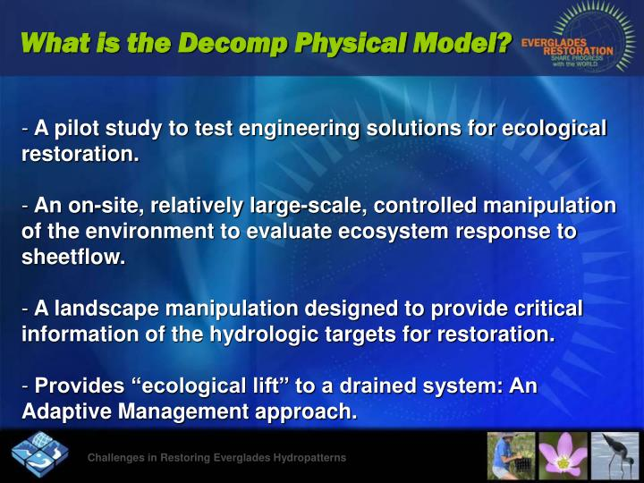 What is the Decomp Physical Model?