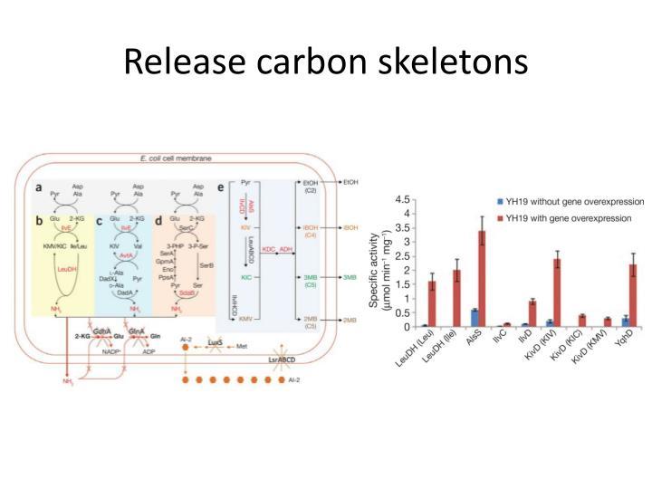 Release carbon skeletons