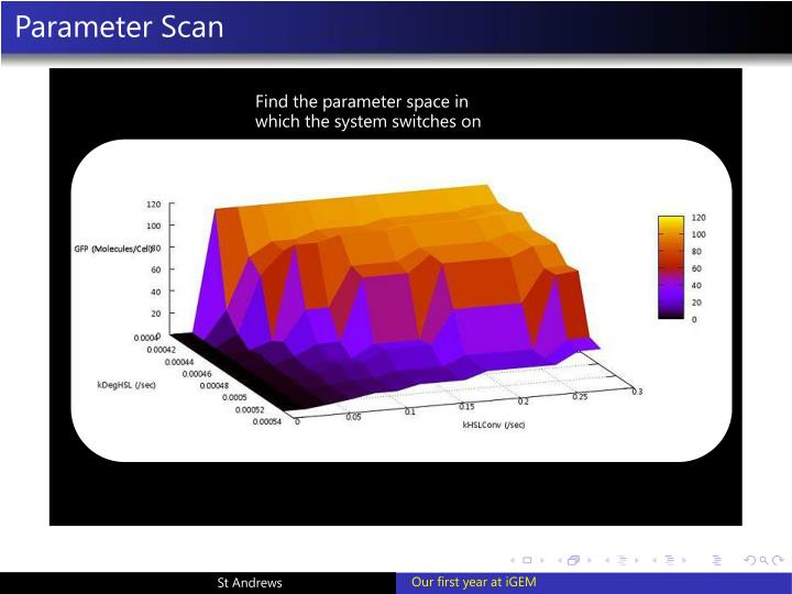 Parameter Scan