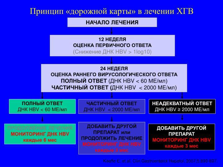 Принцип «дорожной карты» в лечении ХГВ