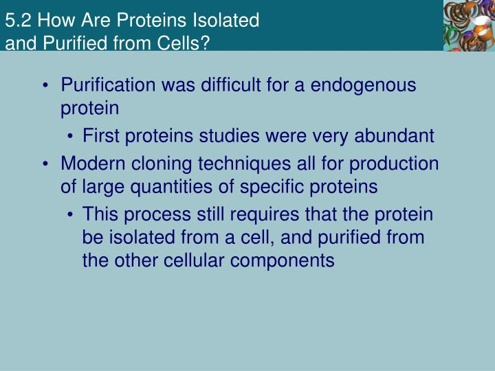 5.2 How Are Proteins Isolated
