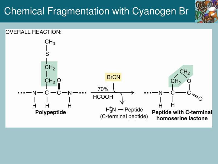 Chemical Fragmentation with Cyanogen Br