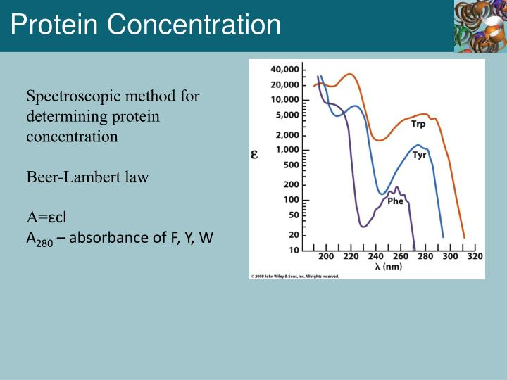 Protein Concentration