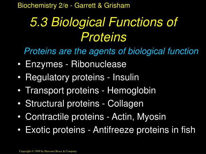 5.3 Biological Functions of Proteins