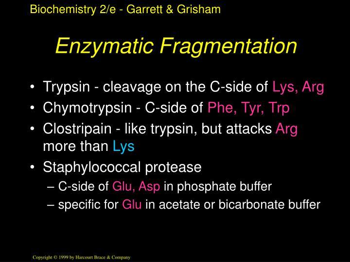 Enzymatic Fragmentation
