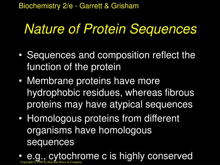 Nature of Protein Sequences