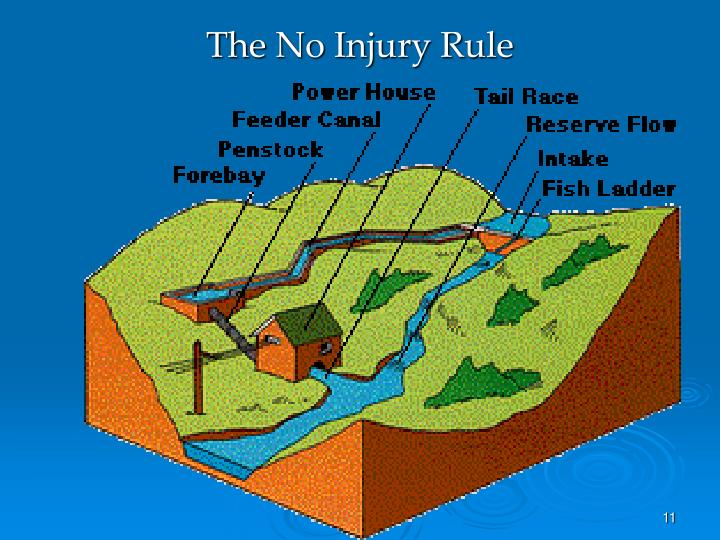 The No Injury Rule