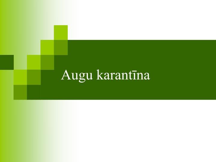 Augu karantīna