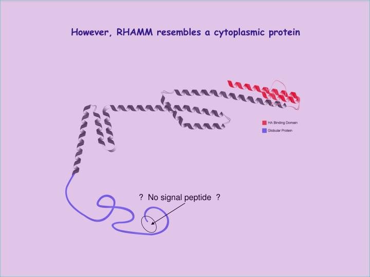 However, RHAMM resembles a cytoplasmic protein
