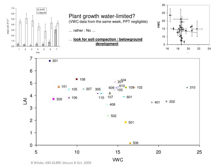 Plant growth water-limited?