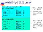 switch break