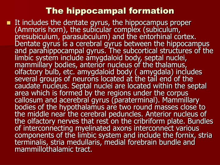 The hippocampal formation