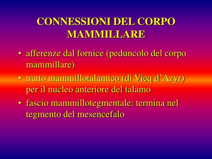 CONNESSIONI DEL CORPO MAMMILLARE