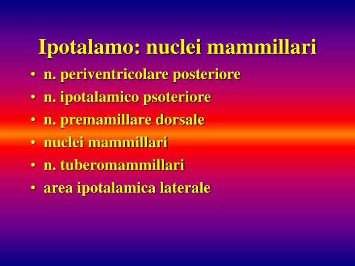 Ipotalamo: nuclei mammillari