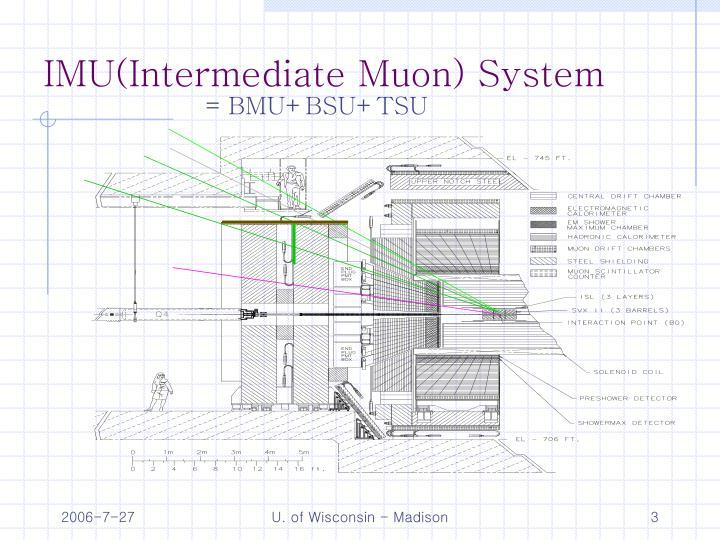 IMU(Intermediate Muon) System