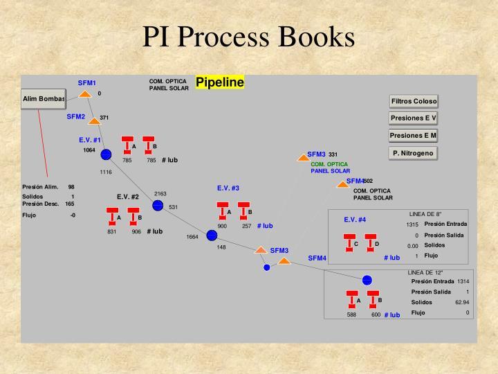 PI Process Books