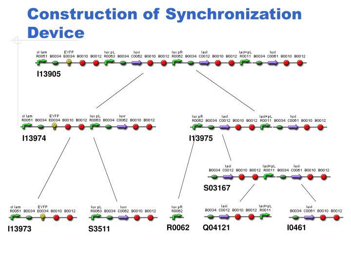 Construction of Synchronization Device
