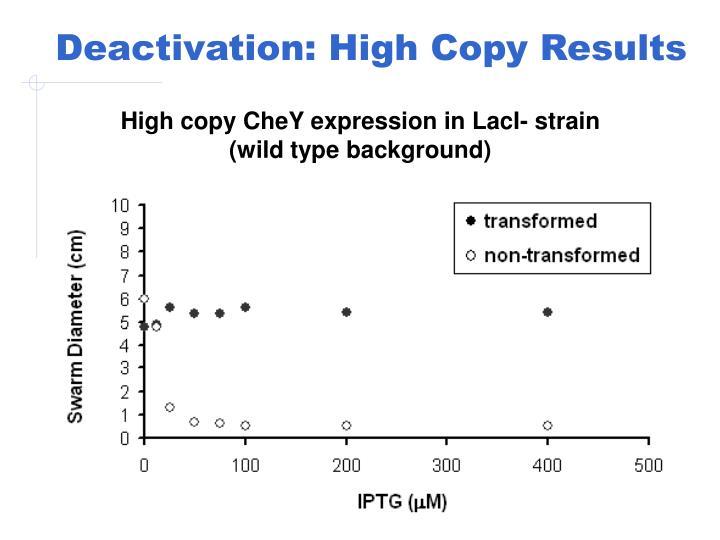 Deactivation: High Copy Results