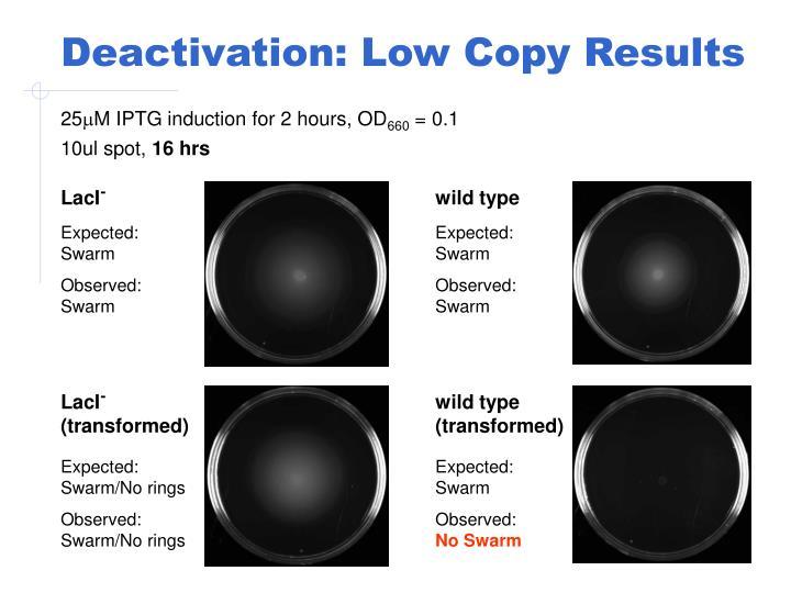 Deactivation: Low Copy Results