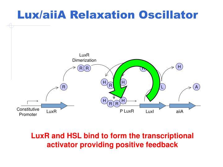 Lux/aiiA Relaxation Oscillator