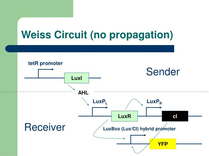 Weiss circuit no propagation