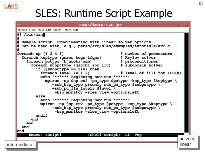 SLES: Runtime Script Example