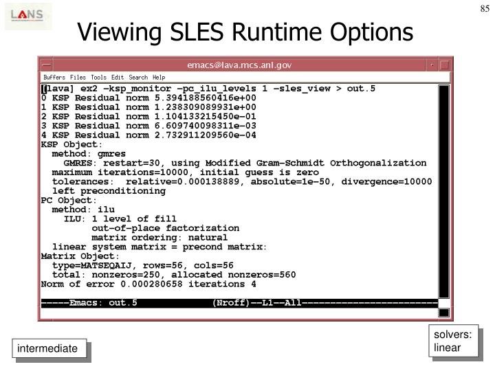 Viewing SLES Runtime Options