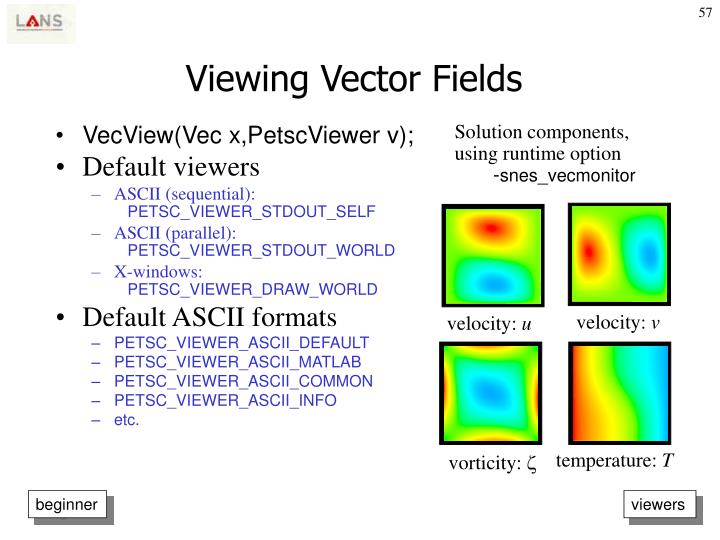 Viewing Vector Fields