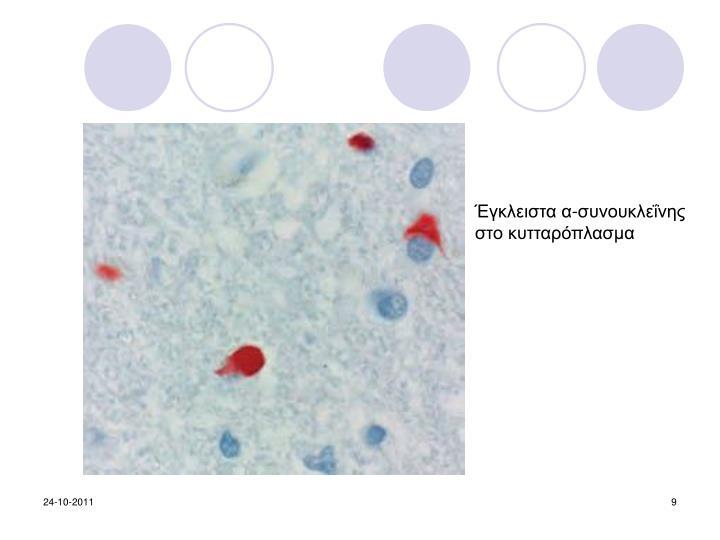Έγκλειστα α-συνουκλεΐνης στο κυτταρόπλασμα
