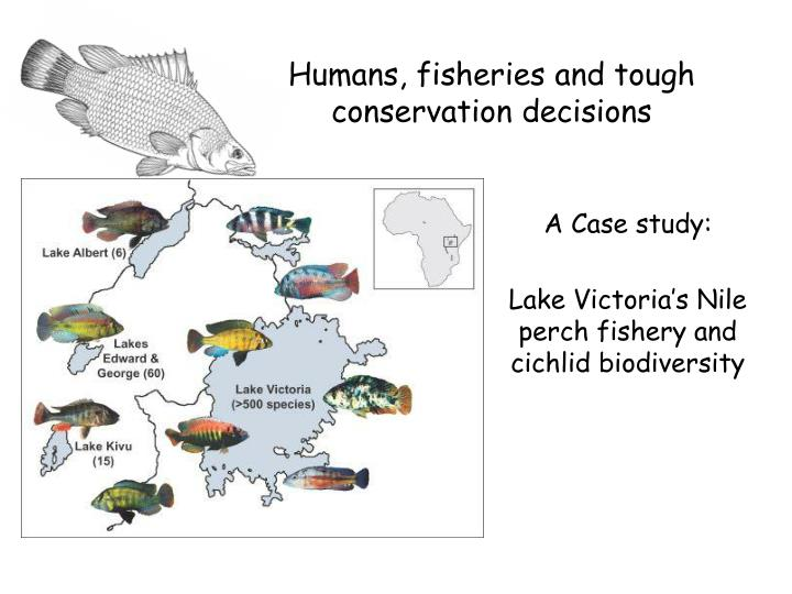 Humans, fisheries and tough conservation decisions
