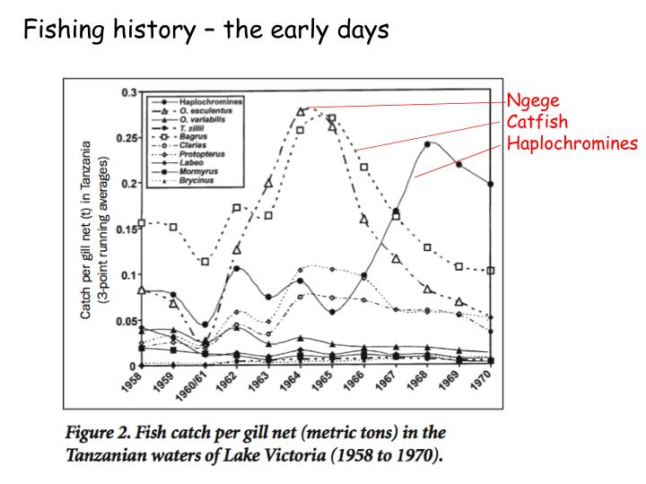 Fishing history – the early days