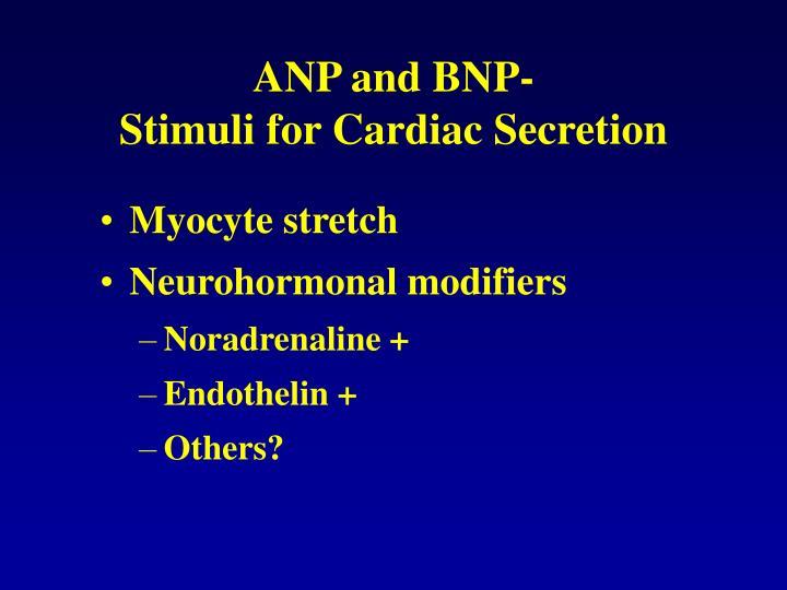 ANP and BNP-