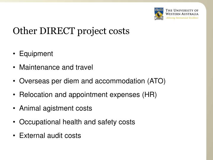 Other DIRECT project costs