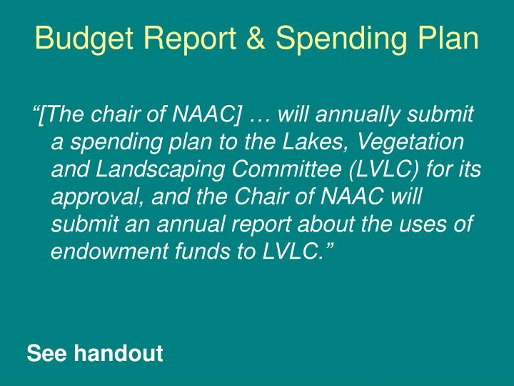 Budget Report & Spending Plan