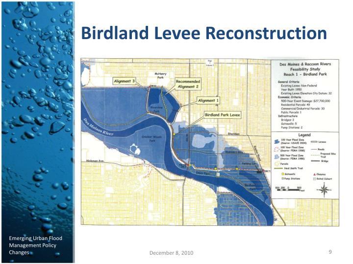 Birdland Levee Reconstruction
