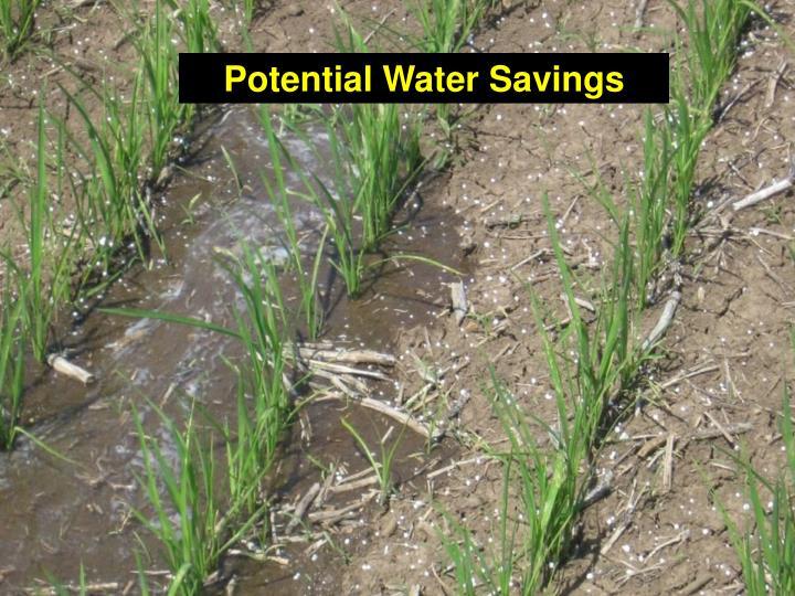 Potential Water Savings