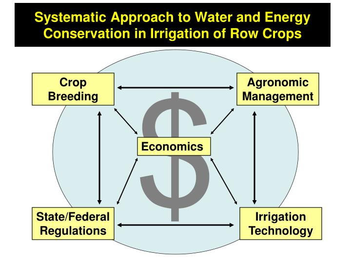 Systematic Approach to Water and Energy Conservation in Irrigation of Row Crops