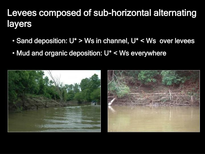 Levees composed of sub-horizontal alternating layers