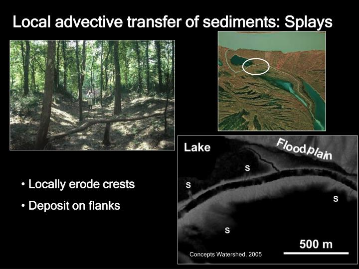 Local advective transfer of sediments: Splays