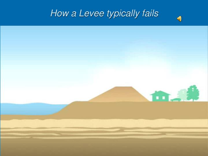 How a Levee typically fails