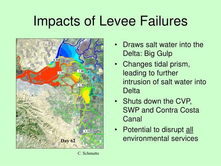 Impacts of Levee Failures