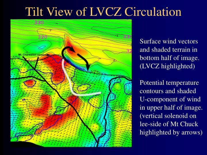 Tilt View of LVCZ Circulation