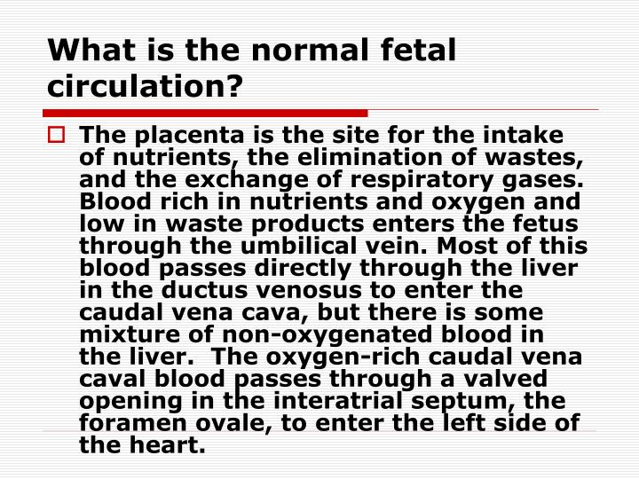 What is the normal fetal circulation?