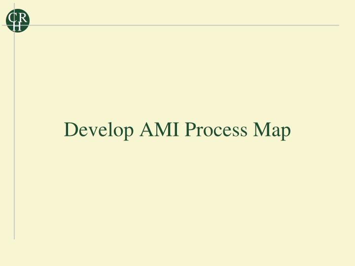 Develop AMI Process Map