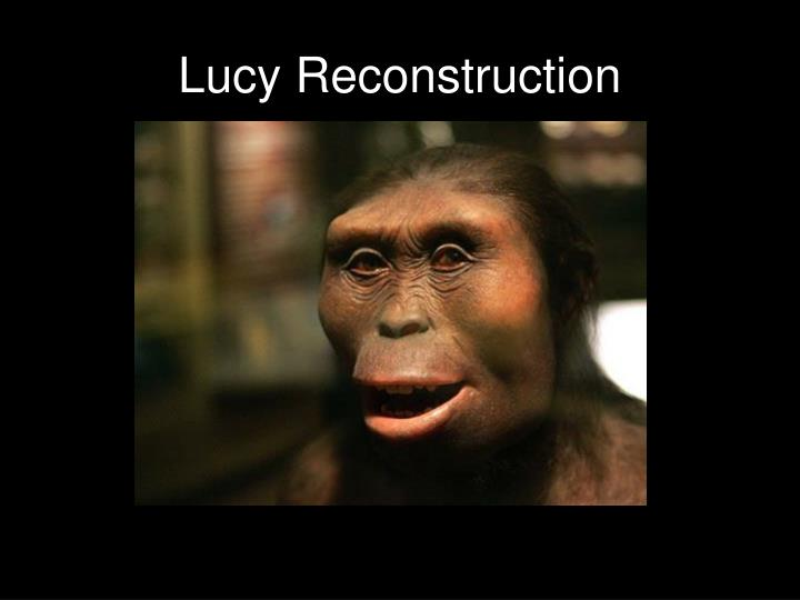 Lucy Reconstruction