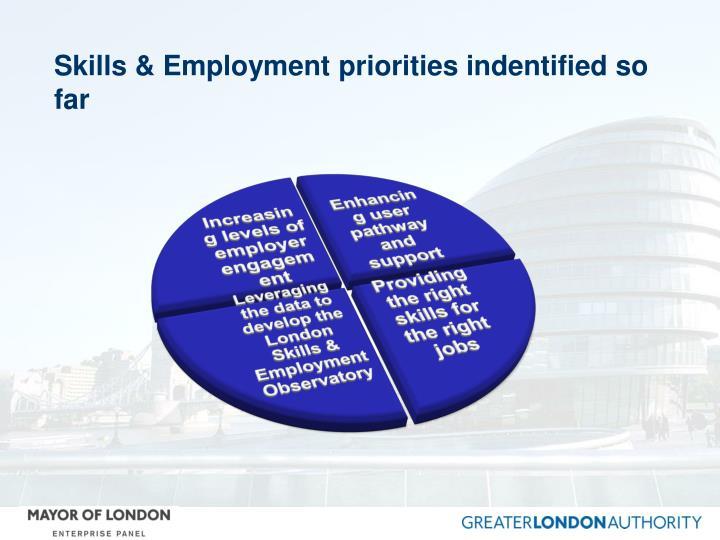 Skills & Employment priorities indentified so far