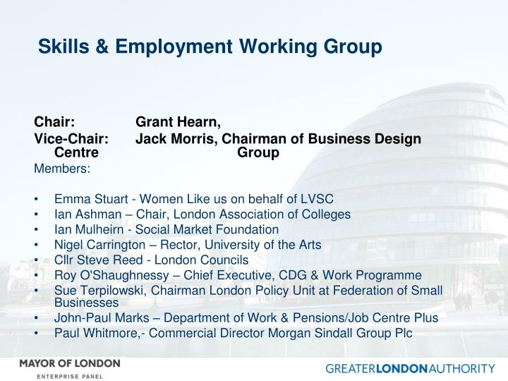 Skills & Employment Working Group