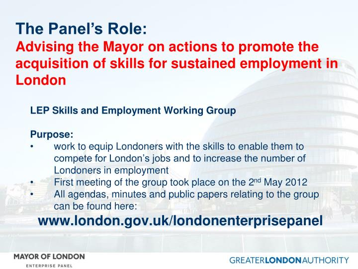 The Panel's Role: